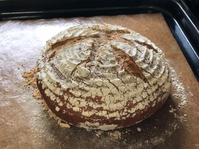 パンで痩せる?美魔女パン予約販売開始! 天然酵母べっぴんカンパーニュ